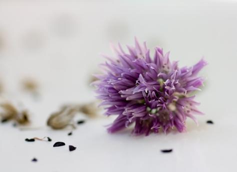Flor de Jeanette Svensson